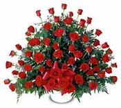 Sympathy red roses