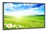 "NEC 46"" Professional Series Large-Screen LCD Display - X461HB"