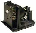OPTOMA H77, H78, H78DC3, H79 Projector Lamp - BL-FU250E - OEM Equivalent