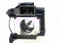 Epson 1716, 1720, 1725, 1730W , and 1735W Projector Replacement Lamp - V13H010L48