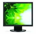 "NEC AccuSync 17"" LCD Display - AS171-BK"