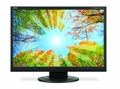 "NEC AccuSync 19"" Widescreen LCD Display - AS191WM-BK"