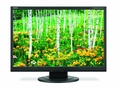 "NEC AccuSync 22"" LCD Display - AS221WM-BK"