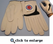 P4P Gloves-OUT OF STOCK
