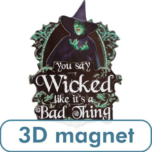 3 D OZ-Wicked Witch Magnet