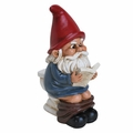 Garden Gnome on the Throne