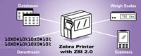 (Click to Enlarge) ZEBRA [48767-001] - >> KIT ZBI 2.0 ENABLEMENT SOFTWARE FOR 5 PRINTERS (ITEM ALSO KNOWN AS : ZEB-48767001) [48767-001]