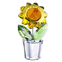 Sunflower Flower Collectibles