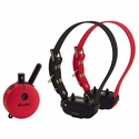 Einstein ET-702 Remote Training Collar 2-dog