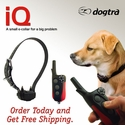 Dogtra iQ Small Dog Training Collar