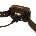 buy discount  Einstein ET-300TS Collar on Charger