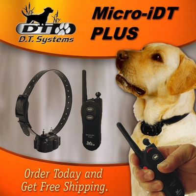 DT Systems Micro iDT PLUS Expandable