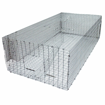 Quail Recall and Holding Pen