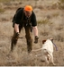 Hunting Dog Training Equipment
