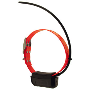 buy discount  What Folks May Not Like about the DC 40 GPS Collar