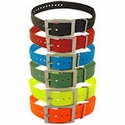 buy discount  Replacement Straps for Dogtra Training Collars