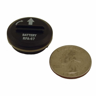 Petsafe 6-Volt Battery RFA-67D-11
