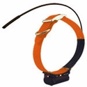 buy discount  Marshall Radio Telemetry PowerMax Hound Tracking Additional Collar / Extra Transmitter with Lights - ORANGE