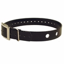 buy discount  Black GDS-81 Replacement 2-Hole Collar Strap for PetSafe and SportDOG