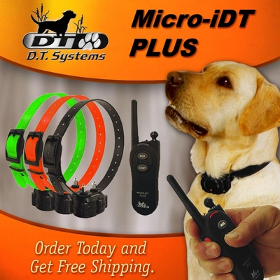 DT Systems Micro iDT PLUS 3-dog Expandable