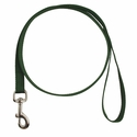 buy discount  GREEN LEASH Single-Ply Nylon Dog Leash - 3/4 in. x 6 ft. (2166)