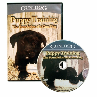 Gun Dog: Puppy Training - The Foundation of a Gun Dog DVD