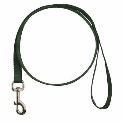 Single-Ply Nylon Dog Leash - 3/4 in. x 4 ft.  (2166)