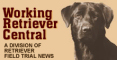 buy  LINK: The Retriever News (formerly Working Retriever Central)