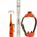 buy discount  SportDOG SD-1875 Collar and Transmitter Scaled