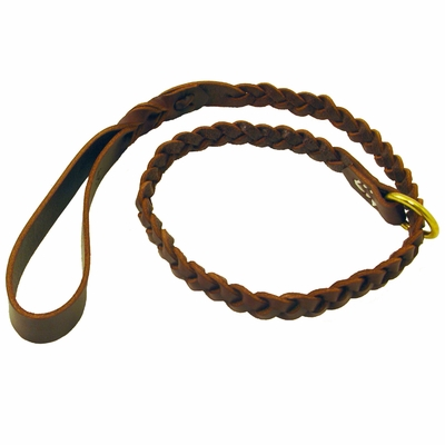 Coyote Leather Braided Slip Lead