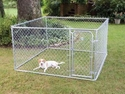 buy discount  PetSafe 7.5 ft. x 7.5 ft. x 4 ft. Boxed Kennel
