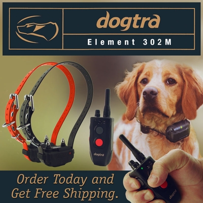 Dogtra Element 302M 2-dog