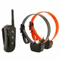 buy discount  2 Dog Remote Training Collars from DT Systems