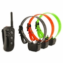 buy discount  3 Dog Remote Training Collars from DT Systems