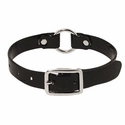 buy discount  3/4 in. Day Glow Center Ring Puppy / Small Dog Collar -- 12 inch