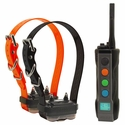 Dogtra Edge Remote Training Collar 2-dog