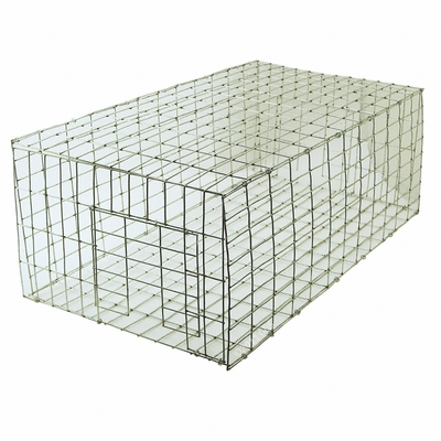 Pigeon Trap 24 in. x 12 in. PT2412/KD by SW Cage