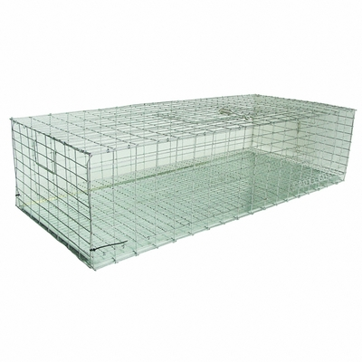 Pigeon Carrier 36 in. x 16 in. PC3616/KD by SW Cage