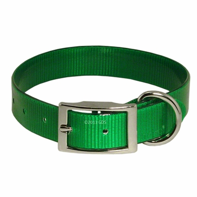 1 in. Day Glow Standard Dog Collar