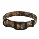 buy discount  Realtree Max 4 D-End Camo Dog Collar