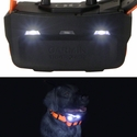 buy discount  Alpha 100 Collar Locator Lights