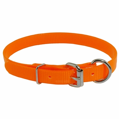 3/4 in. Day Glow D-End Puppy / Small Dog Collar