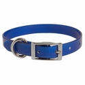 buy discount  Blue 3/4 in. Standard Day Glow Collar