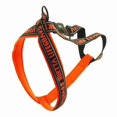 Hurtta Padded Reflective Y-Harness for Dogs
