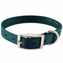 buy discount  Green Single Ply Puppy Dog Collar