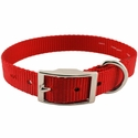 buy discount  Red Single Ply Puppy Dog Collar