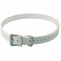 buy discount  WHITE 3/4 in. SportDOG Collar Strap