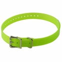 buy discount  YELLOW 3/4 in. SportDOG Collar Strap