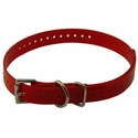 buy discount  RED 3/4 in. SportDOG Collar Strap
