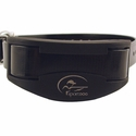 buy discount  SportDOG SD-1825 Collar Detail